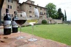 Villa San Filippo**** - 4 days 3 nights for 2 persons with breakfast in Tuscany
