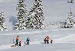 Winter Holiday in South Tyrol! 8 days 7 nights for 2 persons with half-board and extras - Hotel Mühlener Hof****