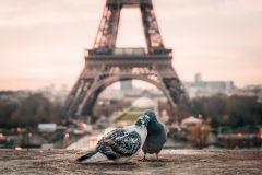 3 nap/2 éjszaka Párizsban 2 fő részére reggelivel - Villa Modigliani